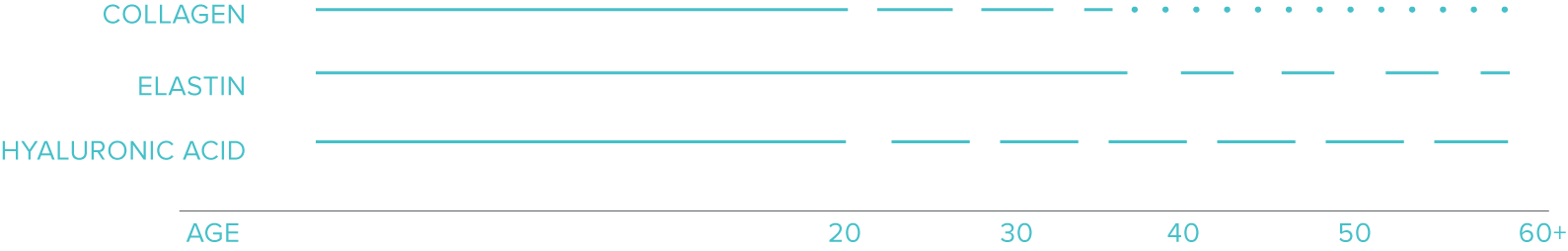 Diagram showing how skin ages over time